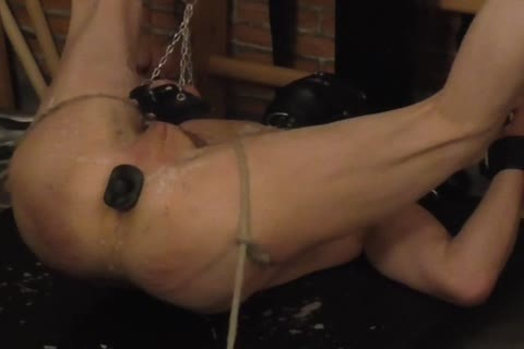 taskmaster: Sadist52   bondman: MasoFun During A 4 H Session The bondman Learned To Feel The Difference between Whip, Flogger, Crop And Cane. he Ist Treated With cute Wax, Elektroplug, Ginger, Penisplug. he's Suspended Upside Down, His Hands Fixed W