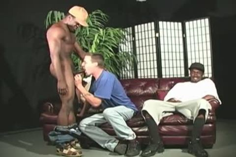 large Cocked Blacks Assfucking A White fellow
