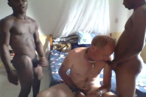 two Africans On One White engulf And plow