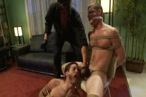 both want everybody paddy obrian and tony gys have sex outdoors love doing things