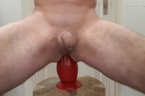 This butt plug Is actually gigantic And he Likes It