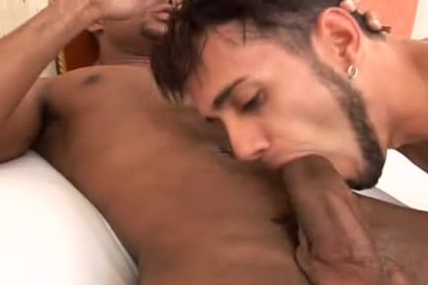 ass twinks plowing schlong with pbootyion