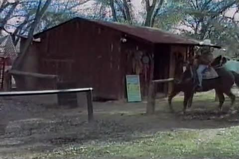 wanking in the barn