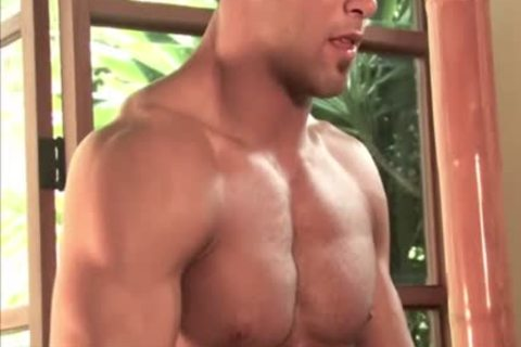 tight Bodybuilder Braun new Scene