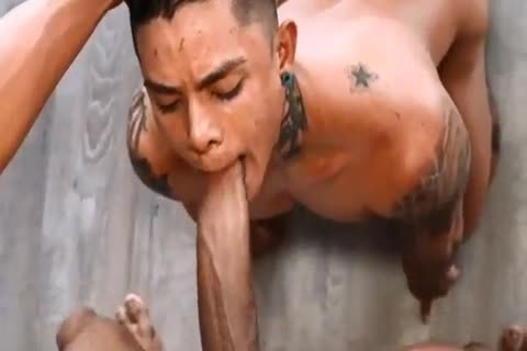 from Harrison brazil gay movie porn