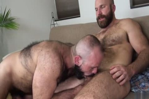 hirsute Bear unprotected With cumshot