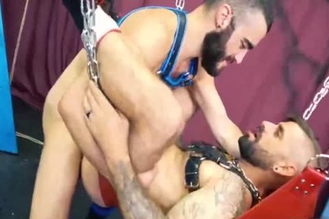 Two Bears And A Sling With Jon Shield And Nick hole