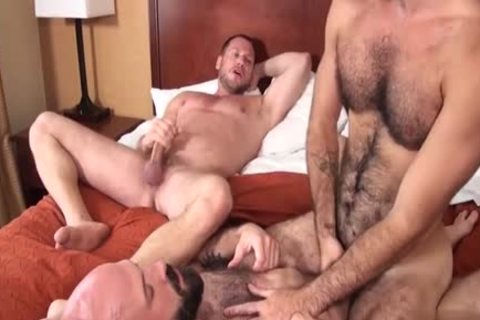 bushy Bear threesome And Creampie
