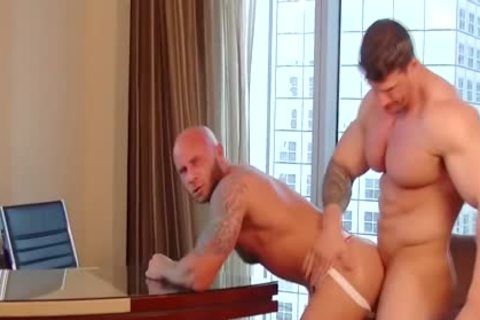 Zeb Atlas Vs Bald