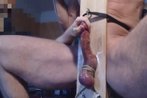Me Edge Milk Ballbust Hung Cumbull With large Balls In Milkingchair