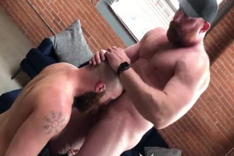 Ginger Bear males pound raw