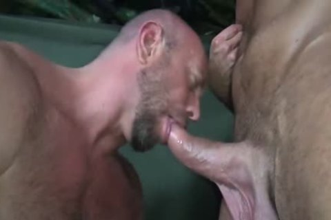 HubxDaddy Two Bears plowing In The Military Camp
