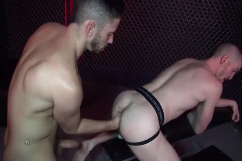 Gaytanamo 2 #three - Owen Powers & Matt Wylde (2017)