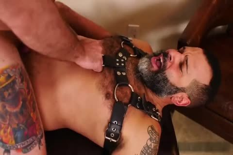 hairy Daddies Playing raw