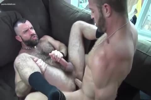 Ulitimate  excited Bears orgy